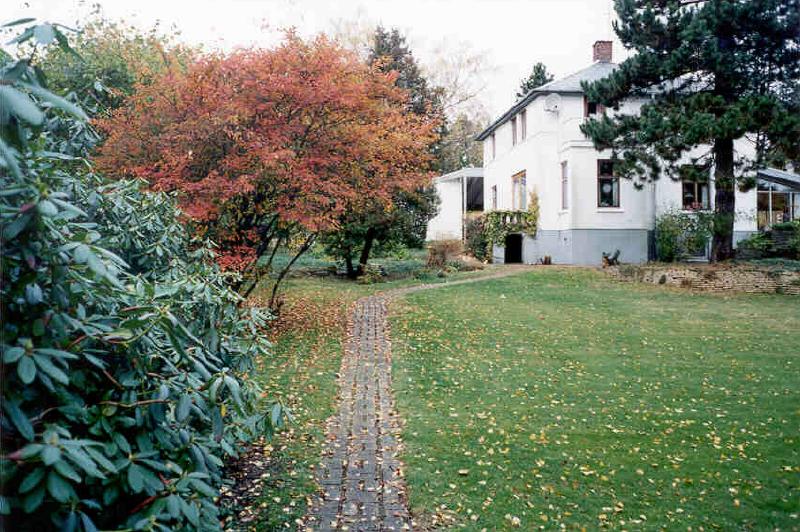 [House seen from garden]